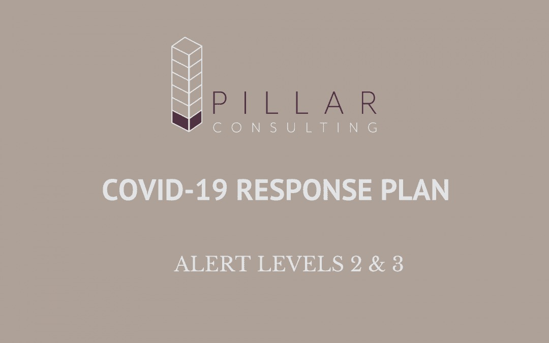 Pillar Consulting Operations During Alert Levels 2 & 3